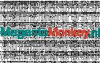 Logo Magentomonkey.nl